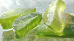 Aloe Vera a cosa serve, benefici e possibili effetti collaterali